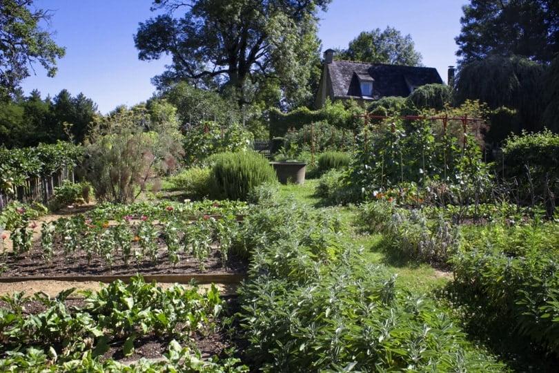 Jardin potager du manoir d'Eyrignac