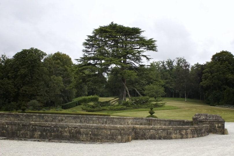 Parc à l'anglaise du château de Hautefort