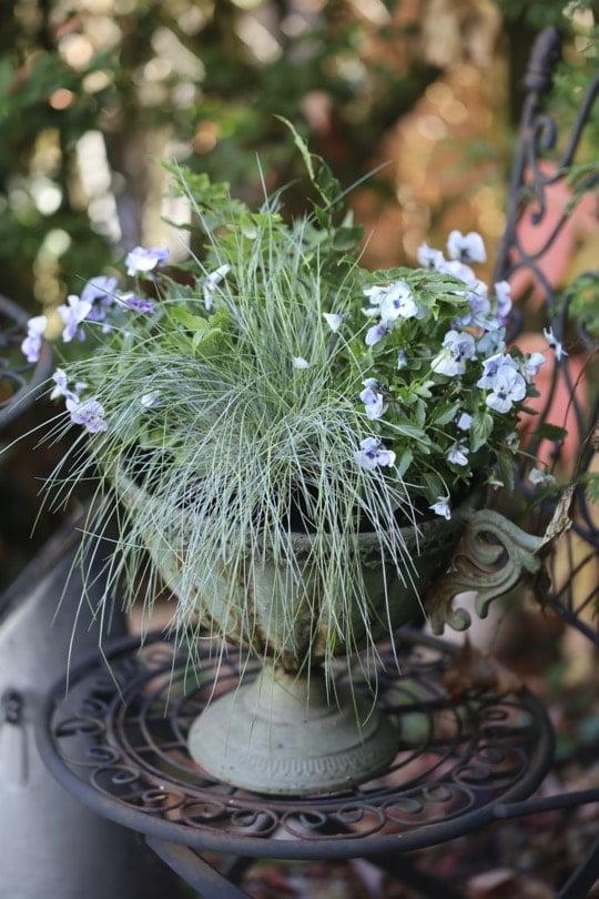 Jardinière automnale et romantique