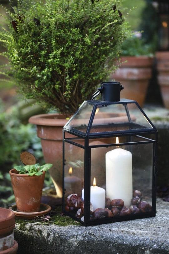 Des lanternes avec des marrons