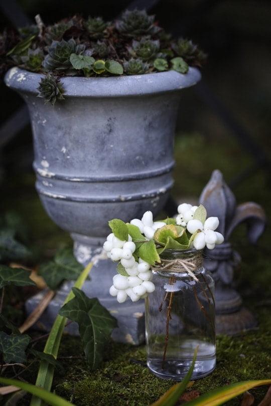 Bouquet de symphorine