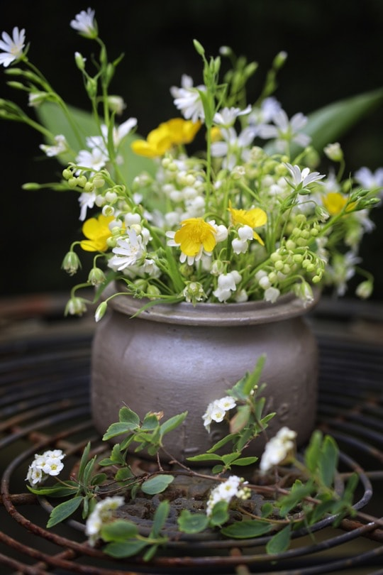 Bouquet de printemps avec des renoncules rampants